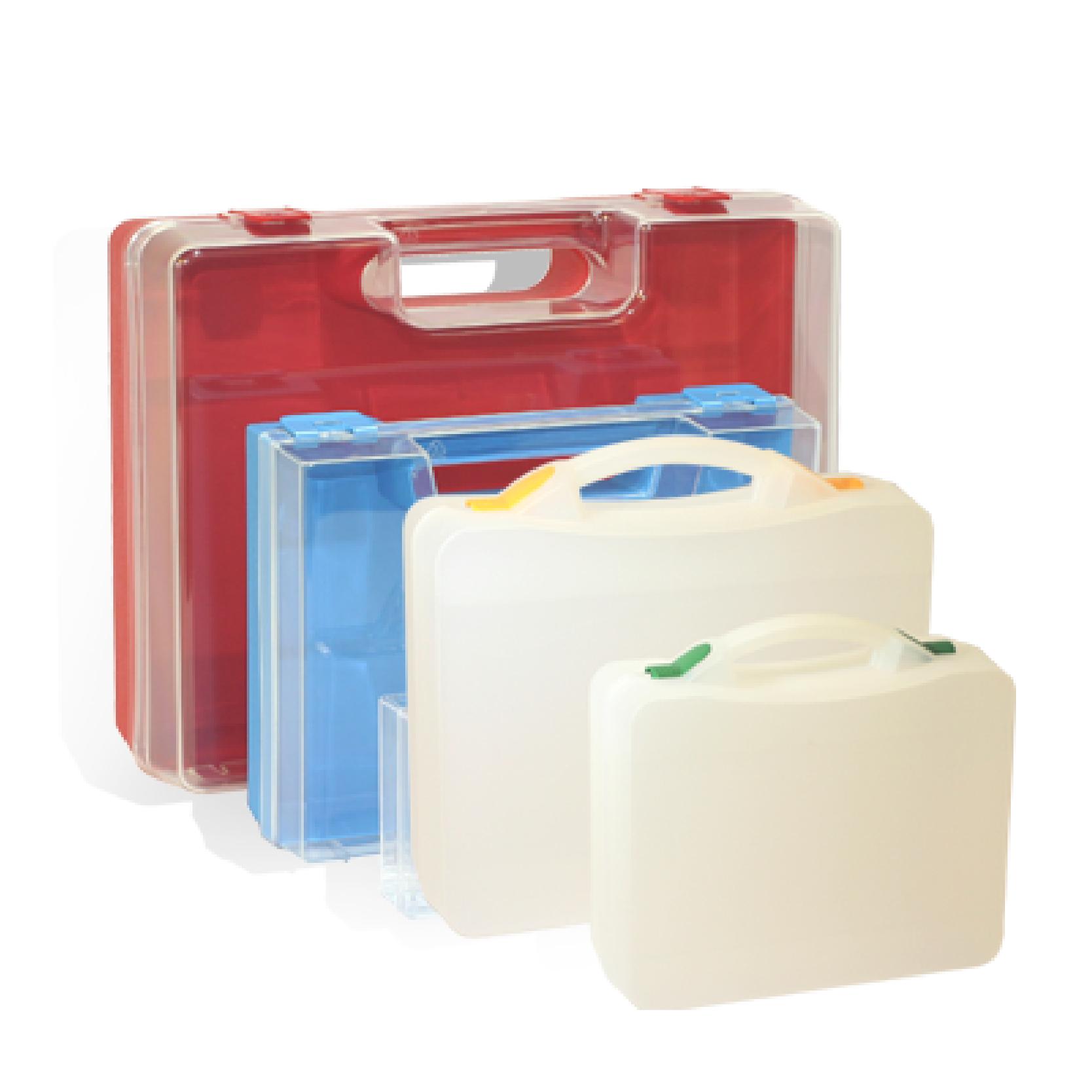 GAGGIONE eplasticase mallettes transparentes - technical cases transparent